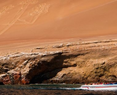 Paracas – Ica Full Day